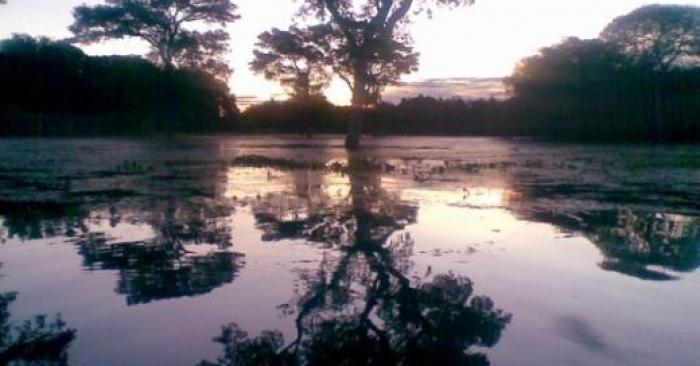 Pantanal e o Refúgio Ecológico Caiman