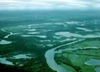 Imagem Pantanal e o Refúgio Ecológico Caiman