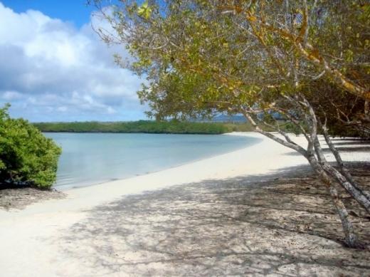 Fotos de Ilhas Galápagos
