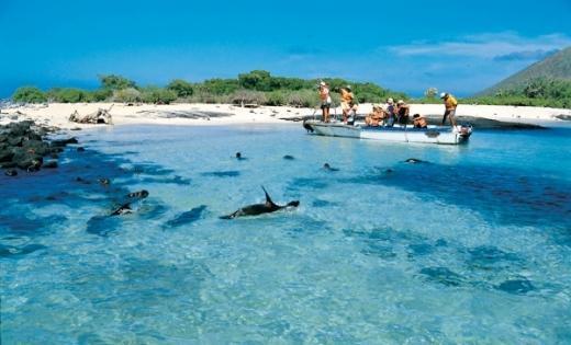 Foto Ilhas Galápagos