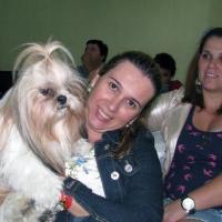 O groomer Sergio Vallasanti realiza tosa em dois cães em evento em São José dos Campos