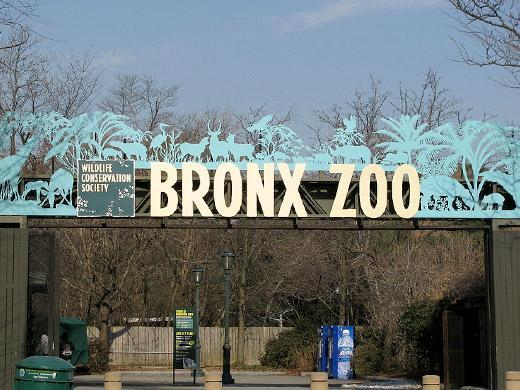 Zoológico do Bronx Nova York