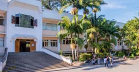 Prejuízos causados pela tecnologia estão impulsionando o crescimento da pedagogia Waldorf